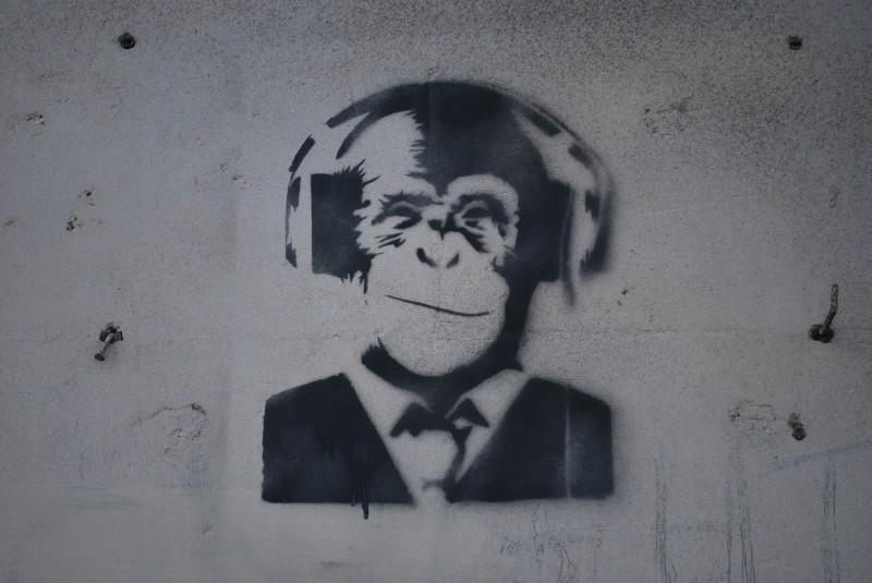 le singe faire le murfaire le mur street art bordeaux et ailleurs. Black Bedroom Furniture Sets. Home Design Ideas
