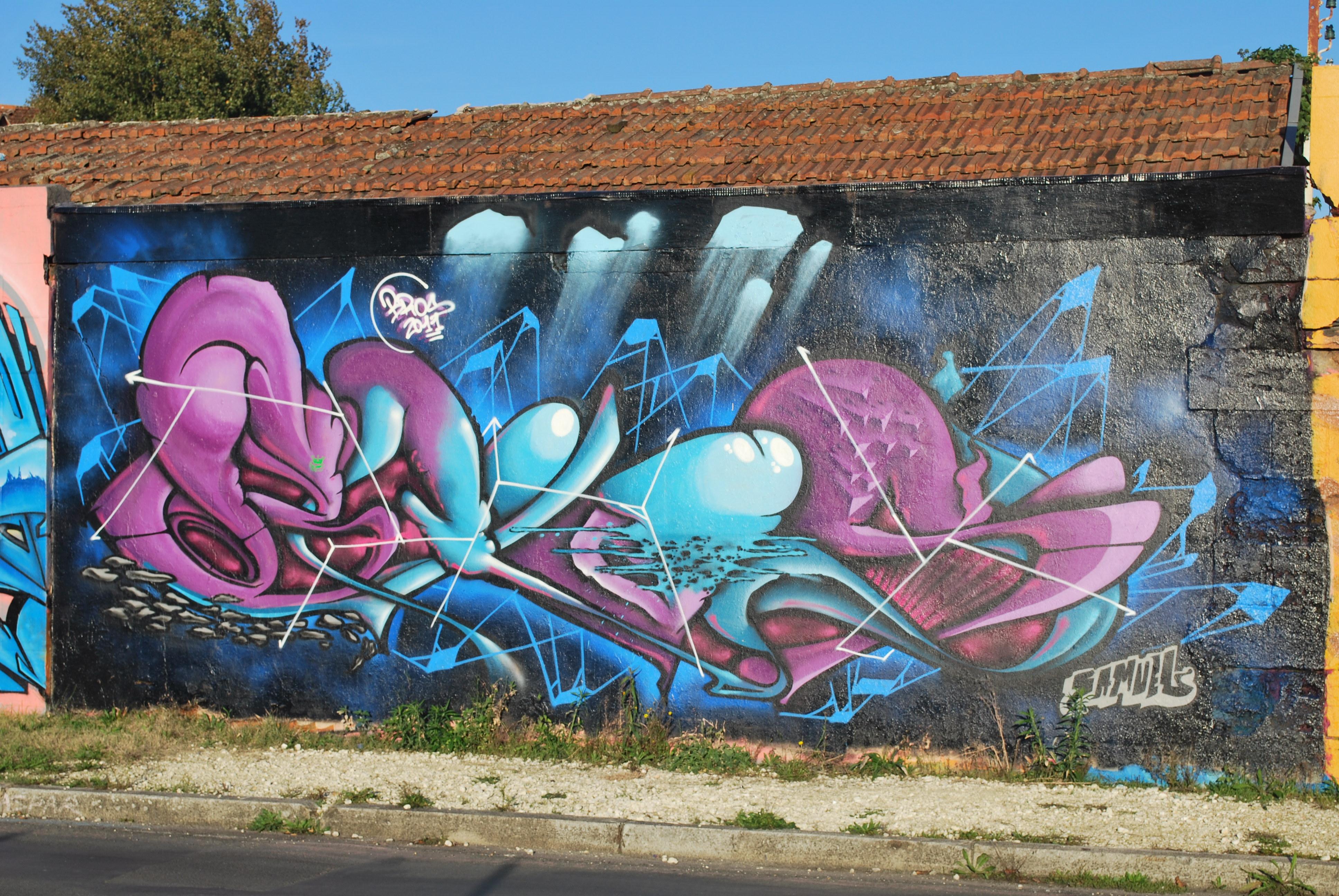 Lettrage Samuel Faire Le Murfaire Le Mur Street Art