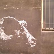 Rue du cloitre, nov 2011