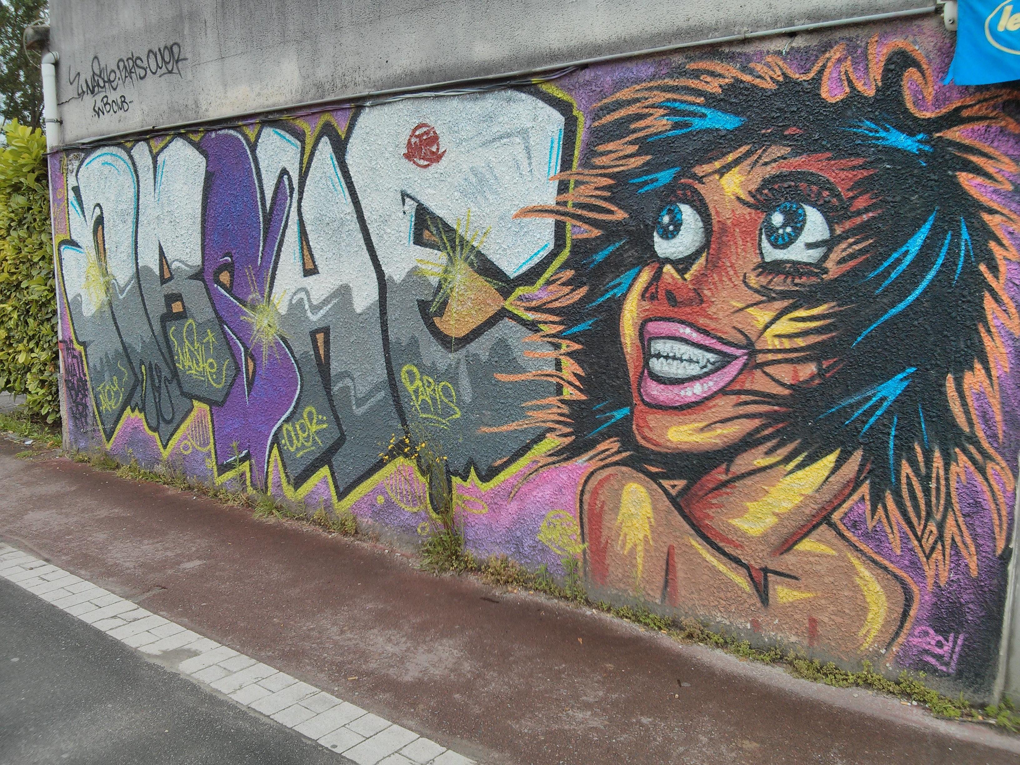 street art talence bordeaux pr s du creps aquitainefaire le mur street art bordeaux et. Black Bedroom Furniture Sets. Home Design Ideas